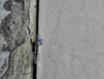 Saphir et diamants sur bague or 18 carats